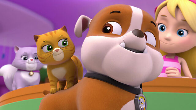 File:103-paw-patrol-kitty-catastrophe-16x9.jpg