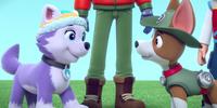 The Pups' Winter Wonder Show/Trivia