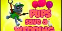 Pups Save a Wedding/Images