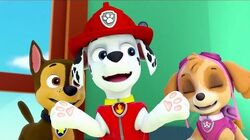 PAW Patrol The Best of Friends part 1 North American English
