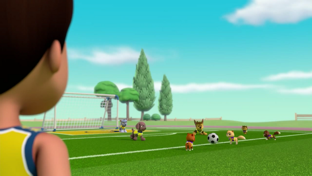 File:Pups Soccer 37.png