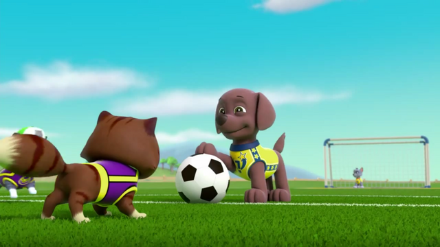 File:Pups Soccer 44.png