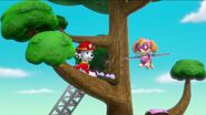 PAW Patrol Pups Save the Songbirds Scene 44
