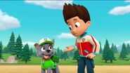 PAW Patrol Pups Save a Goldrush Scene 11