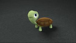 Turtles6