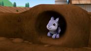 Bunnies (Bunnies)3