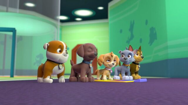 File:PAW.Patrol.S01E21.Pups.Save.the.Easter.Egg.Hunt.720p.WEBRip.x264.AAC 184384.jpg
