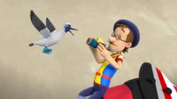 Mad Booby Bird!