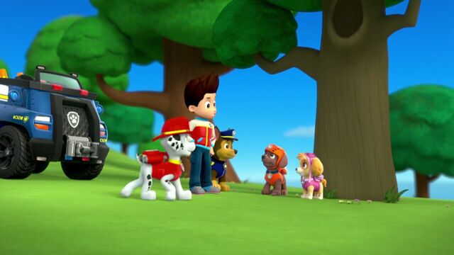 File:PAW.Patrol.S01E26.Pups.and.the.Pirate.Treasure.720p.WEBRip.x264.AAC 914881.jpg