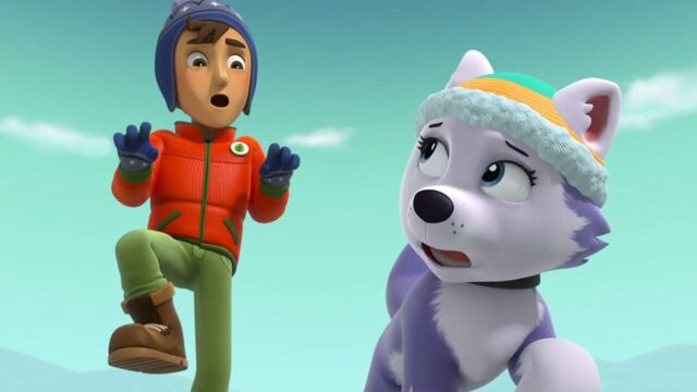 File:PAW.Patrol.S02E07.The.New.Pup.720p.WEBRip.x264.AAC 1015114.jpg