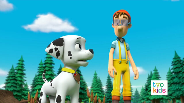 File:PAW Patrol Pups Save a Flying Kitty 13.jpg