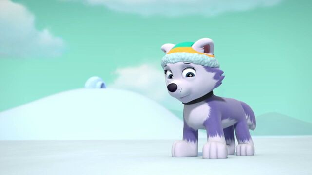File:PAW.Patrol.S02E07.The.New.Pup.720p.WEBRip.x264.AAC 1228994.jpg