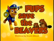 Pups Save the Beavers SD