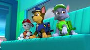 PAW.Patrol.S02E07.The.New.Pup.720p.WEBRip.x264.AAC 668334