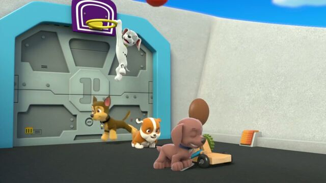 File:PAW.Patrol.S01E26.Pups.and.the.Pirate.Treasure.720p.WEBRip.x264.AAC 193660.jpg