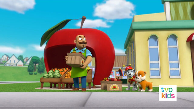 File:PAW Patrol Pups Save the Critters 4.jpg