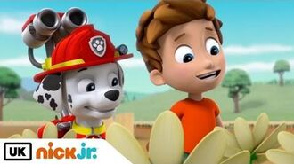 Paw Patrol Pups Get Growing Nick Jr. UK