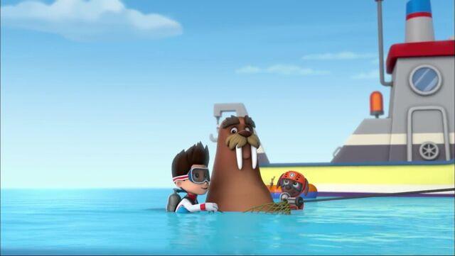 File:PAW Patrol - Wally the Walrus - Flounder 2.jpg