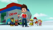 PAW.Patrol.S02E07.The.New.Pup.720p.WEBRip.x264.AAC 737570