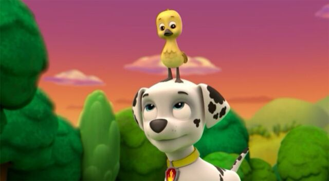 File:Pup Pup Goose Marshall and Fuzzy.JPG