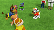 Pup-Fu! 187