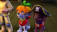 PAW.Patrol.S01E12.Pups.and.the.Ghost.Pirate.720p.WEBRip.x264.AAC 1057990