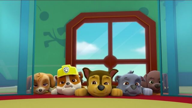 File:PAW Patrol Pups Save the Songbirds Scene 14.jpg