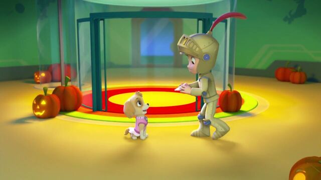 File:PAW.Patrol.S01E12.Pups.and.the.Ghost.Pirate.720p.WEBRip.x264.AAC 48348.jpg