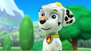 PAW.Patrol.S01E21.Pups.Save.the.Easter.Egg.Hunt.720p.WEBRip.x264.AAC 144177