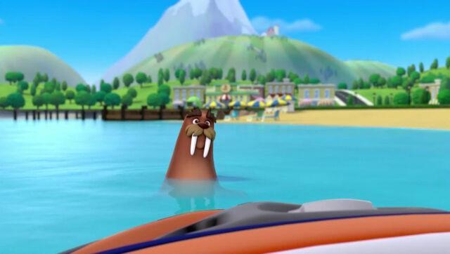 File:PAW Patrol - Wally the Walrus - School Day 2.jpg