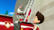 PAW.Patrol.S01E21.Pups.Save.the.Easter.Egg.Hunt.720p.WEBRip.x264.AAC 1162361