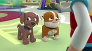 PAW.Patrol.S01E16.Pups.Save.Christmas.720p.WEBRip.x264.AAC 244311