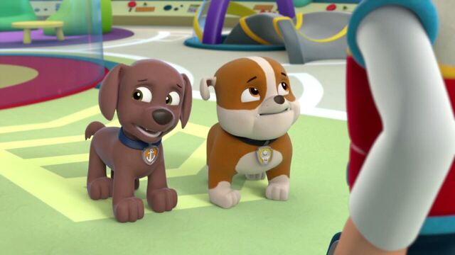 File:PAW.Patrol.S01E16.Pups.Save.Christmas.720p.WEBRip.x264.AAC 244311.jpg