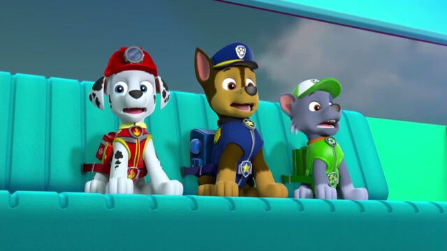 File:PAW.Patrol.S02E07.The.New.Pup.720p.WEBRip.x264.AAC 693960.jpg