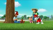 PAW Patrol Pups Save the Songbirds Scene 35