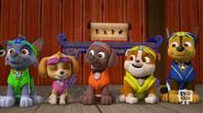 Pup-Fu!23(Yellow Belt Anticipation)