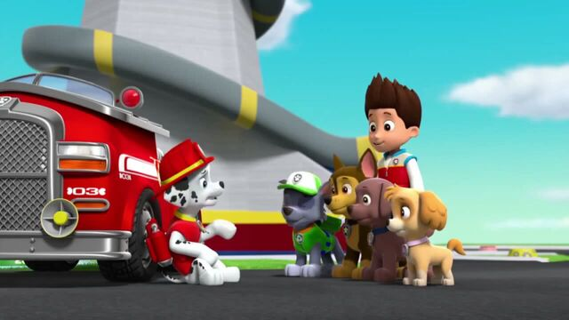 File:PAW Patrol Season 2 Episode 10 Pups Save a Talent Show - Pups Save the Corn Roast 219152.jpg