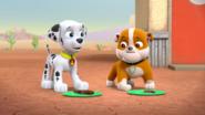 PAW Patrol Pups Save a Robo-Saurus Scene 6