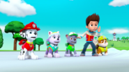 PAW Patrol Pups Save Sports Day Scene 18