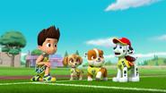 Pups Soccer 36