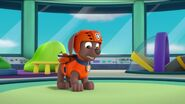 PAW Patrol Pups Save the Hippos Scene 21