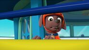 PAW Patrol Pups Save the Hippos Scene 17