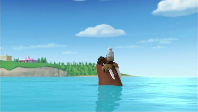 File:PAW Patrol - Wally the Walrus - Bottle.jpg