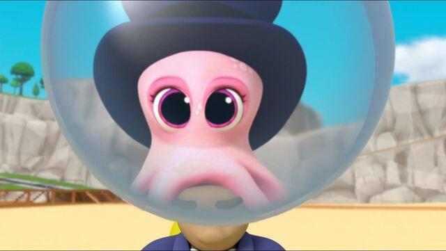 File:Baby Octopus 97.jpg