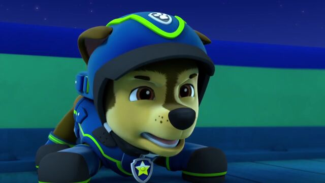 Plik:PAW.Patrol.S02E02.Pups.Save.the.Penguins.-.Pups.Save.a.Dolphin.Pup.720p.WEBRip.x264.AAC.mp4 000504537.jpg