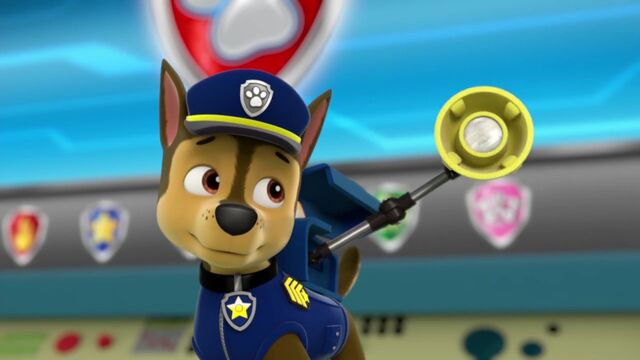 File:PAW.Patrol.-.Pups.Save.Rydermp4 000939438.jpg