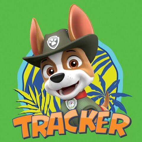 Plik:Tracker.JPG