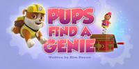 Pups Find a Genie