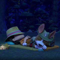 Tracker and Carlos sleeping