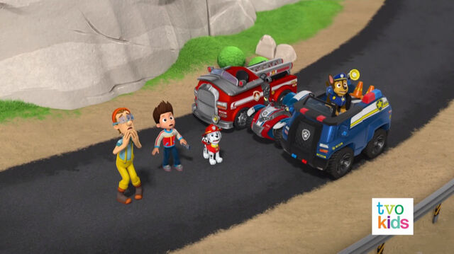 File:PAW Patrol Pups Save a Flying Kitty 28.jpg